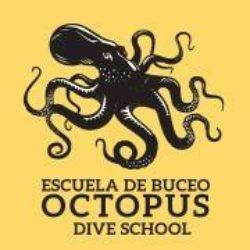 Octopus Buceo Bolonia